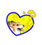 Corgi LOVE(個別スタンプ:08)