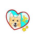 Corgi LOVE(個別スタンプ:09)