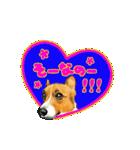 Corgi LOVE(個別スタンプ:18)