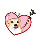 Corgi LOVE(個別スタンプ:30)
