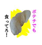 【実写】ポテチ(個別スタンプ:11)