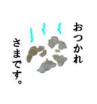 【実写】ポテチ(個別スタンプ:20)