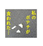 【実写】ポテチ(個別スタンプ:25)