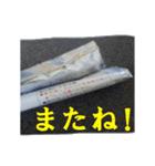 【実写】ポテチ(個別スタンプ:39)
