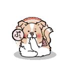 ボーダーコリー/おでか犬(個別スタンプ:07)