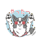 ボーダーコリー/おでか犬(個別スタンプ:09)