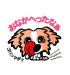 ボーダーコリー/おでか犬(個別スタンプ:17)