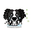 ボーダーコリー/おでか犬(個別スタンプ:18)