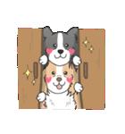 ボーダーコリー/おでか犬(個別スタンプ:24)