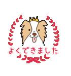 ボーダーコリー/おでか犬(個別スタンプ:27)