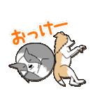 ボーダーコリー/おでか犬(個別スタンプ:28)