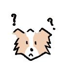 ボーダーコリー/おでか犬(個別スタンプ:31)
