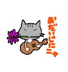 ウクレレを弾く猫 (グレー)(個別スタンプ:17)