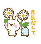 うさひな ☆お花とやさしい言葉☆(個別スタンプ:38)