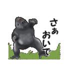 動く!ゴリラごりら(個別スタンプ:9)
