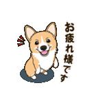 気軽にスタンプ コーギー 行動編(個別スタンプ:05)