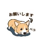 気軽にスタンプ コーギー 行動編(個別スタンプ:08)