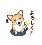 気軽にスタンプ コーギー 行動編(個別スタンプ:09)