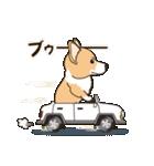 気軽にスタンプ コーギー 行動編(個別スタンプ:27)