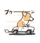 気軽にスタンプ コーギー 行動編(個別スタンプ:28)