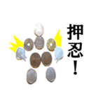 【実写】小銭(個別スタンプ:19)