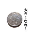 【実写】小銭(個別スタンプ:22)