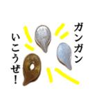 【実写】小銭(個別スタンプ:24)
