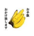 【実写】バナナ(個別スタンプ:18)