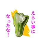 【実写】ピーマン(個別スタンプ:02)