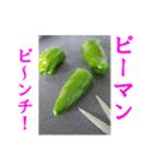 【実写】ピーマン(個別スタンプ:06)