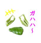 【実写】ピーマン(個別スタンプ:08)