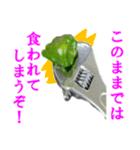 【実写】ピーマン(個別スタンプ:09)