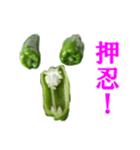 【実写】ピーマン(個別スタンプ:10)