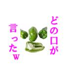 【実写】ピーマン(個別スタンプ:11)