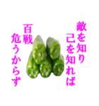 【実写】ピーマン(個別スタンプ:13)