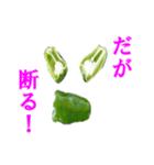 【実写】ピーマン(個別スタンプ:27)