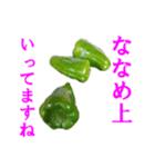 【実写】ピーマン(個別スタンプ:28)