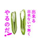 【実写】ピーマン(個別スタンプ:30)