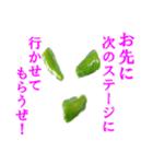 【実写】ピーマン(個別スタンプ:33)