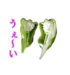【実写】ピーマン(個別スタンプ:39)