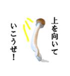 【実写】しめじ(個別スタンプ:02)