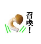 【実写】しめじ(個別スタンプ:03)