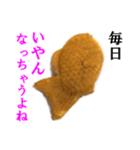 【実写】たいやき(個別スタンプ:01)