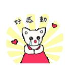 猫のチィちゃん(台湾中国語&日本語)