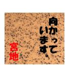 宮地さんの名前スタンプ(個別スタンプ:09)