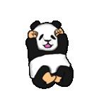 便利なパンダスタンプ(個別スタンプ:37)