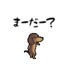 激しく尻尾をふるイヌ4(個別スタンプ:01)