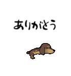 激しく尻尾をふるイヌ4(個別スタンプ:05)