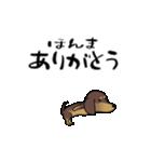 激しく尻尾をふるイヌ4(個別スタンプ:06)