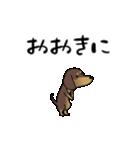 激しく尻尾をふるイヌ4(個別スタンプ:07)